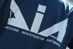 «Spiccata aggressività criminale», la fotografia della DIA sulla criminalità della BAT