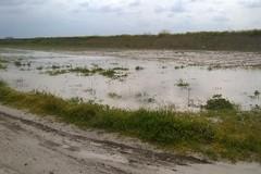 Parco nazionale, ciò che il fiume Ofanto ha lasciato