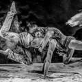 Le coreografie di Grazia Ferrante e Veronica Dicorato per la mostra di Salvatore Lanotte