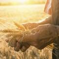 Acqua per agricoltura, Sindaco e assessore dal Consorzio di Bonifica