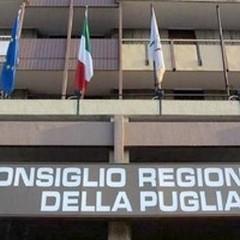 Regionali 2015: un solo candidato consigliere sanferdinandese, l'elenco