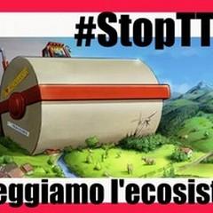«Greenpeace» raccoglie le firme contro il Ttip