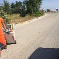 Igiene pubblica, fondi della Regione per la pulizia dei cigli stradali