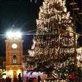 A San Ferdinando di Puglia c'è aria di Natale. Il cartellone degli eventi
