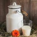 Latte e formaggi, da domani scatta l'obbligo dell'origine in etichetta