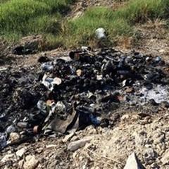 «Bruciano rifiuti, anziché differenziarli»