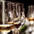 Dalla Puglia alla Germania per scoprire i vini migliori
