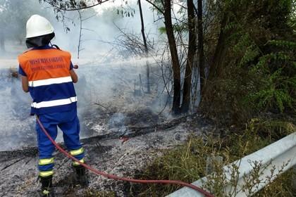 Squadra Antincendio Boschivo Misericordia