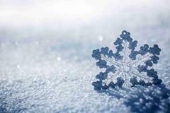 Weekend di San Valentino al gelo, previste nevicate a bassa quota