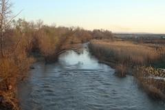 Prelievi d'acqua indiscriminati, in pericolo il fiume Ofanto
