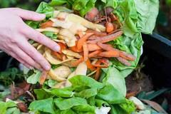 Trattamento rifiuti organici, per San Ferdinando di Puglia ristoro da 18mila euro