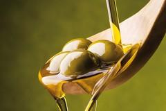 Sansa per produrre bioenergia, svolta green della filiera olivicola