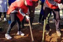 """Spi Cgil, """"Piantiamo il futuro degli anziani 1.000 alberi per l'ambiente"""""""