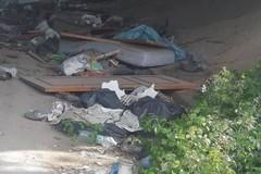 Anas e Comune rimuoveranno i rifiuti dalle strade. Puttilli agli sporcaccioni: «La pagherete»