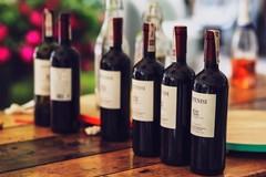 Vino di Puglia amato all'estero, export da record