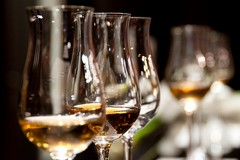 """Puglia del vino, più soldi alle distillazioni: """"Vittoria degli agricoltori pugliesi"""""""