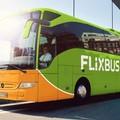 Flixbus, da San Ferdinando di Puglia collegamenti verso 8 città italiane