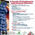 """""""A scuola di vendemmia nella Daunia Ofantina """", 20 e 21 settembre a San Ferdinando di Puglia"""