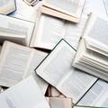 """A  """"Libri nel Borgo Antico """" presente anche San Ferdinando"""