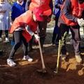 """Spi Cgil,  """"Piantiamo il futuro degli anziani 1.000 alberi per l'ambiente """""""