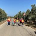 """""""Puliamo il mondo"""", a San Ferdinando di Puglia Despar Centro-sud con Legambiente"""