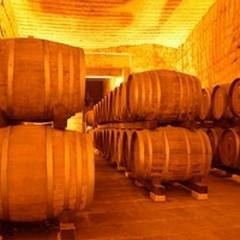 """Architetture di Vino, l'Ordine degli Architetti alla scoperta delle  """"cantine """""""