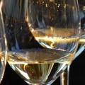 Settore enologico sotto attacco, Coldiretti: «UE vuole annacquare il vino»