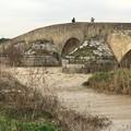 """L'archeologa Filli Rossi presenta il libro  """"Ofanto, la via del fiume """""""
